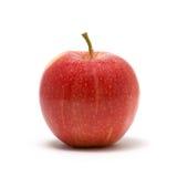 苹果新红色 免版税库存图片