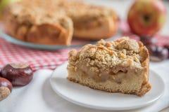 苹果新近地被烘烤的饼 免版税库存图片