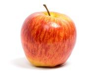 苹果新鲜成熟 库存照片