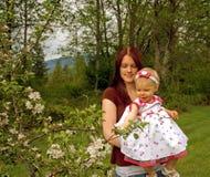 苹果有吸引力的查找的妈妈小孩结构树 库存图片