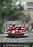 苹果有机红色 免版税库存照片