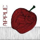 苹果木刻 库存照片