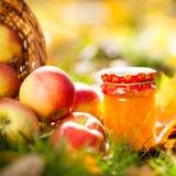 苹果果酱瓶子 免版税库存图片