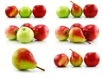 苹果查出梨成熟集白色 库存照片