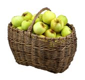 苹果查出的篮子绿色 免版税库存图片