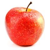 苹果查出的红色白色 库存照片