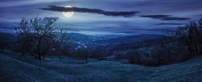 苹果树全景山坡的在晚上 免版税库存照片