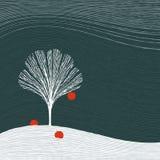 苹果树冬天 免版税图库摄影
