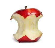 苹果树桩 库存图片