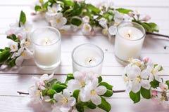 苹果树花和三个蜡烛在白色木背景 库存图片