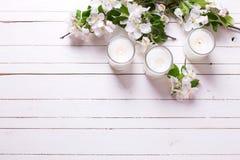 苹果树花和三个蜡烛在白色木背景 免版税库存图片