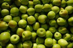 苹果格兰尼史密斯苹果 库存图片
