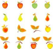 苹果梨和秋天叶子 库存图片
