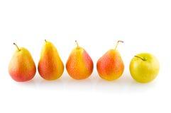 苹果梨红色成熟 图库摄影