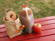 苹果汁油炸圈饼 库存图片