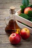 苹果汁醋和新鲜的红色苹果 免版税库存照片