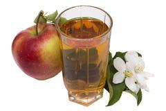 苹果汁静物画 免版税图库摄影