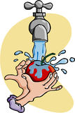 苹果洗涤液 库存例证