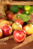苹果湿篮子的表 免版税库存照片