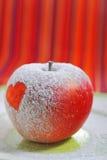 苹果爱 免版税库存照片