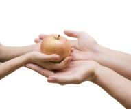 苹果父亲红色 免版税图库摄影