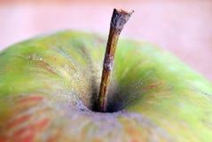 苹果特写镜头 免版税图库摄影