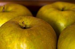 苹果特写镜头在老木架子的晚秋天 库存图片