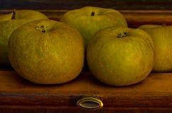 苹果特写镜头在老木架子的晚秋天 库存照片