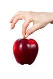 苹果现有量藏品红色 库存图片