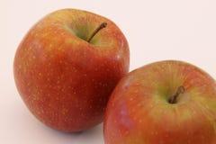 苹果白色的背景关闭 免版税图库摄影