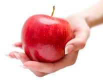 给苹果的女性手 图库摄影