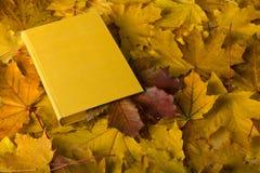 苹果秋天对光检查袋装花瓶的构成干燥叶子 与书签的书从红色叶子 免版税库存照片