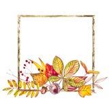 苹果秋天对光检查袋装花瓶的构成干燥叶子 例证由秋天莓果和叶子制成在白色背景 提供例证公园池塘天鹅结构水彩的子项 免版税库存图片