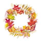 苹果秋天对光检查袋装花瓶的构成干燥叶子 花圈由秋天莓果和叶子制成在白色背景 提供例证公园池塘天鹅结构水彩的子项 免版税图库摄影