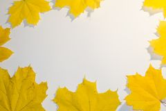 苹果秋天对光检查袋装花瓶的构成干燥叶子 花圈由花楸浆果和秋天红色花制成 平的位置,顶视图,拷贝空间 库存图片