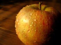 苹果秋天 免版税库存照片