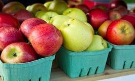苹果种类 免版税库存照片