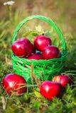 苹果篮子其次布料刀子红色到二 库存图片