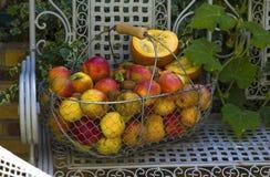 苹果篮子在白色长凳的 免版税库存照片