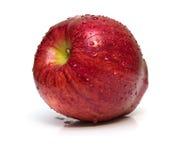 苹果红色成熟弄湿了 库存照片