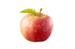 苹果红色 库存图片
