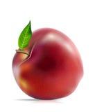 苹果红色 库存例证