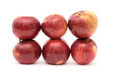 苹果结构 免版税库存照片
