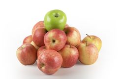 苹果绿化一个红顶 库存照片