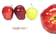 苹果绿色红色 库存图片
