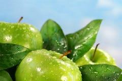 苹果绿色 图库摄影