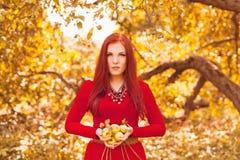 苹果美丽的吃的种族模型公园红色非常妇女 非常吃红色苹果的美好的种族模型在公园 库存图片