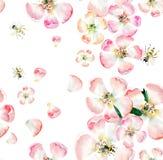 苹果老练美丽的逗人喜爱的可爱的嫩草本花卉春天花与绿色叶子和蜂的仿造水彩 皇族释放例证
