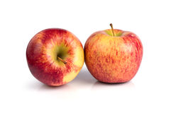 苹果背景关闭白色的一个红色 免版税库存照片