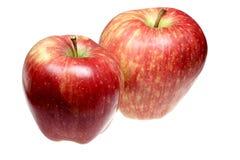 苹果背景有酸口味白色 库存照片